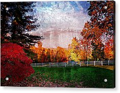 View From Sugarland Heights Acrylic Print by Julie Dant