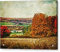 View From The Hill... Acrylic Print by Lianne Schneider
