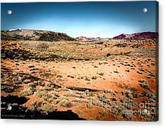 View From Wupatki Acrylic Print by Arne Hansen