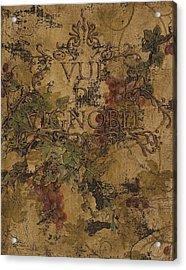 View Of The Vineyard Acrylic Print by Chris Brandley