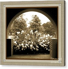 View To The Garden Acrylic Print by Darla Wood