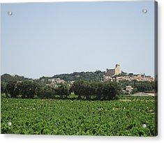 Vineyard In Provence Acrylic Print by Pema Hou
