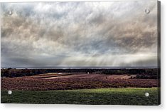 Vineyard On The Lake Acrylic Print by Peter Chilelli