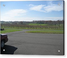 Vineyards In Va - 121230 Acrylic Print by DC Photographer