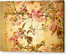 Vintage Blossom Acrylic Print by Jessica Jenney
