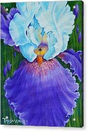 Vintage Iris Acrylic Print by Tanja Ware