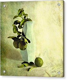 Vintage Limes Acrylic Print by Linde Townsend