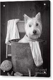 Vintage Wash Day Acrylic Print by Edward Fielding