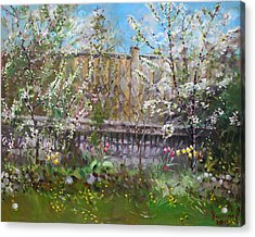 Viola's Apple And Cherry Trees Acrylic Print by Ylli Haruni