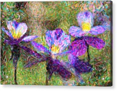 Violet Flowers Acrylic Print by Toppart Sweden