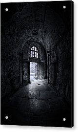 Visions From The Dark Side Acrylic Print by Evelina Kremsdorf