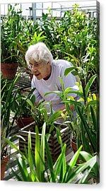 Volunteer At A Botanic Garden Acrylic Print by Jim West