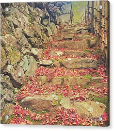 Wabi-sabi Rubble Masonry Bamboo Fence Fallen Leaves Acrylic Print by Beverly Claire Kaiya