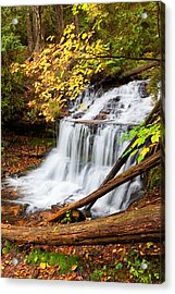 Wagner Falls In Autumn Acrylic Print by Craig Sterken