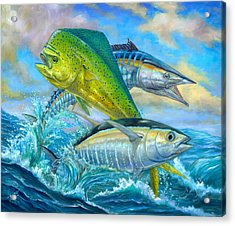 Wahoo Mahi Mahi And Tuna Acrylic Print by Terry  Fox