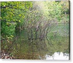 Walden Pond Acrylic Print by Catherine Gagne