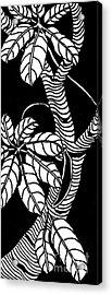 Wandering Leaves Octopus Tree Design Acrylic Print by Mukta Gupta