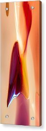 Wanting More Acrylic Print by Omaste Witkowski