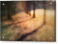 Warner Park Sunrise Acrylic Print by David Morel