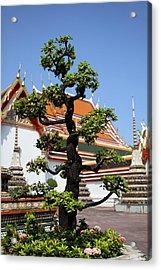 Wat Pho - Bangkok Thailand - 011323 Acrylic Print by DC Photographer