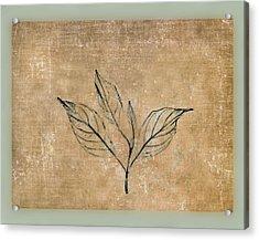 Watch A Leaf Acrylic Print by Bob RL Evans