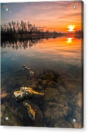 Watching Sunset Acrylic Print by Davorin Mance