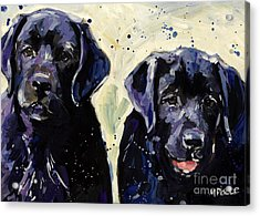 Water Boys Acrylic Print by Molly Poole