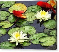 Water Lily Pond In Autumn Acrylic Print by Susan Savad