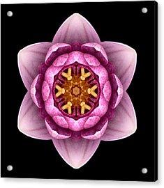 Water Lily X Flower Mandala Acrylic Print by David J Bookbinder