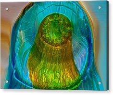 Water Realm Acrylic Print by Omaste Witkowski