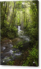 Waterfall In The Forest Acrylic Print by Debra and Dave Vanderlaan