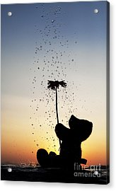 Watering A Flower Acrylic Print by Tim Gainey
