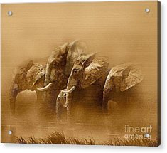 Watering Hole Acrylic Print by Robert Foster