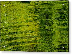 Water's Green Acrylic Print by Roxy Hurtubise