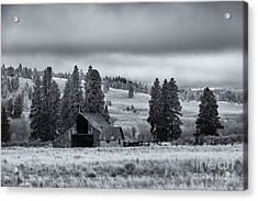 Weathered Beneath The Storm Acrylic Print by Mike  Dawson