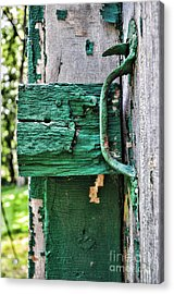 Weathered Green Paint Acrylic Print by Paul Ward