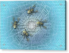 Web Crawlers Acrylic Print by Carol & Mike Werner