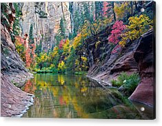 West Fork Serenity Acrylic Print by Guy Schmickle