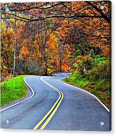 West Virginia Curves 2 Acrylic Print by Steve Harrington