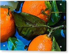 Wet Tangerines Acrylic Print by Alexander Senin