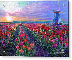 Tulip Fields, What Dreams May Come Acrylic Print by Jane Small