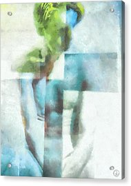 What The Painter Saw Acrylic Print by Gun Legler