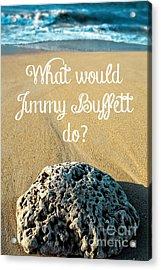 What Would Jimmy Buffett Do Acrylic Print by Edward Fielding