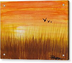Wheatfield At Sunset Acrylic Print by Darren Robinson