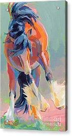 Whee Acrylic Print by Kimberly Santini
