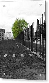 When Hope Blooms Again Acrylic Print by Stefan Kuhn