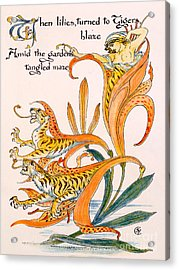 When Lilies Turned To Tiger Blaze Acrylic Print by Walter Crane