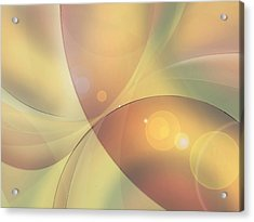 When Small Worlds Collide Acrylic Print by Ginny Schmidt