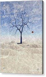 When The Last Leaf Falls... Acrylic Print by John Edwards