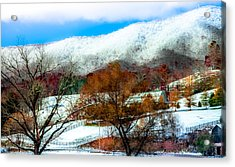 When Winter Blankets Autumn Acrylic Print by Karen Wiles